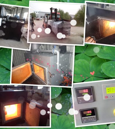 Model TS30 oil fired waste small incinerator 30kgs