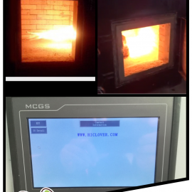 Small Scale Medical Waste Coronovirus (Covid 19) Incinerator 30 kgs per hour Model TS30 PLC Auto Control